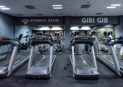 Gibi_Gib (40)