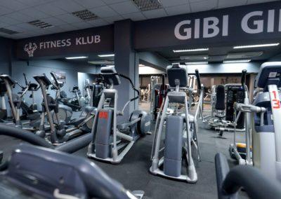 Gibi_Gib (41)
